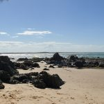 The best things to do in Port Macquarie