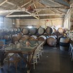Kid Friendly Wineries in the Coonawarra Wine Region.