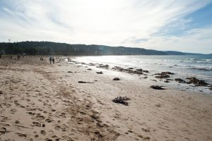 Lorne Beach and Loutit Bay