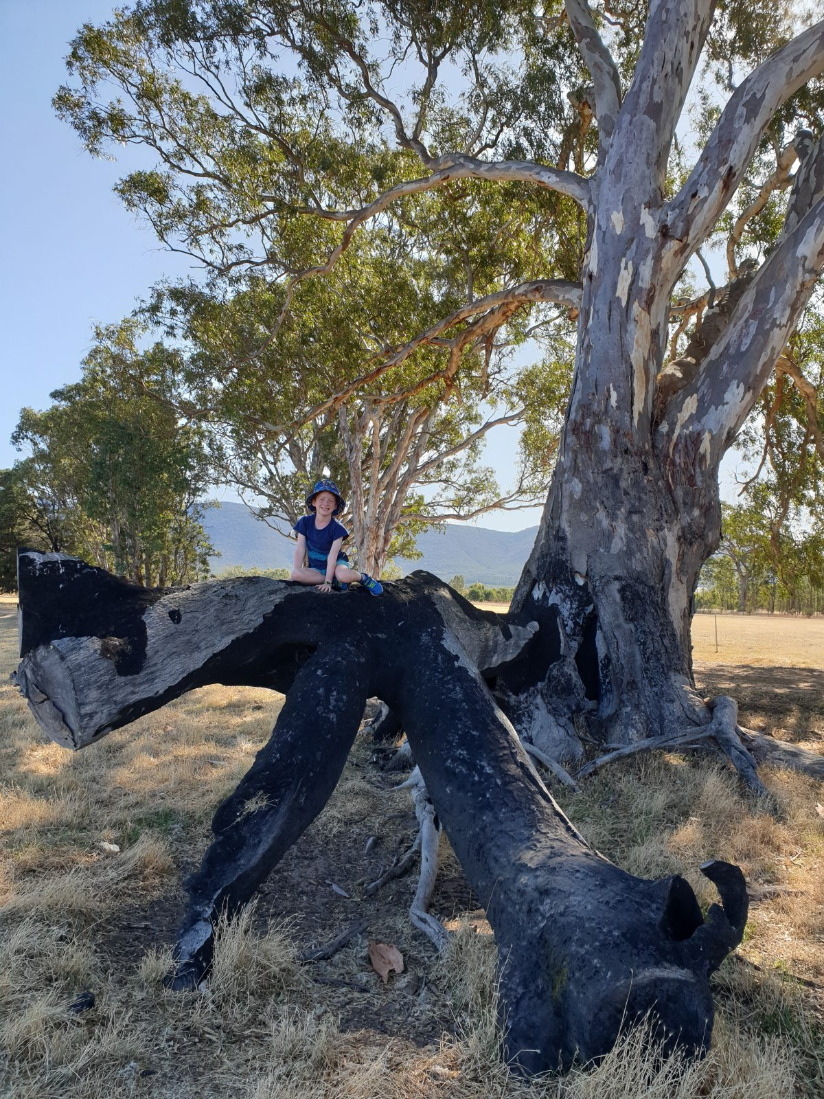 Eastern Grampians With Kids