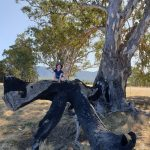 Northern Grampians For Families