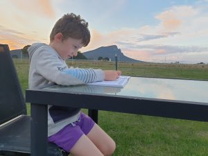Mental Health Activities For Families - journal writing