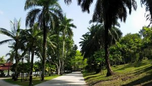 Best Things to Do in Kuala Lumpur with Family